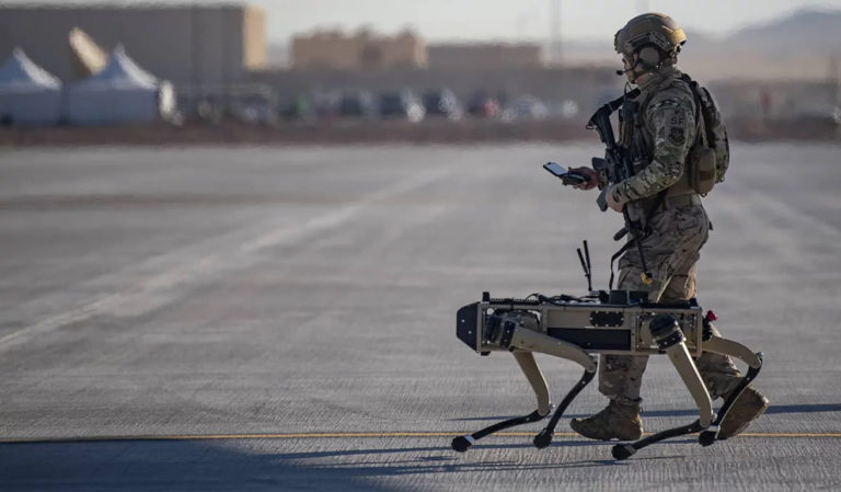 Autonomous Weapons and the Cardinal Principles of IHL